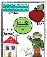Basic Needs Information